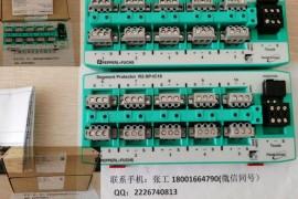 P+F倍加福R2-SP-IC10网分段保护器,倍加福现场总线设备